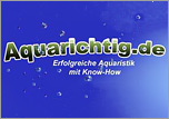 AquaRichtig perfekte Aquaristik mit Know how